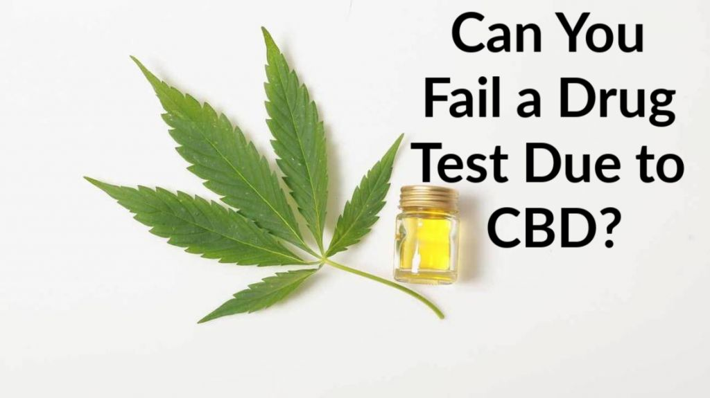 Can You Fail a Drug Test Due to CBD?