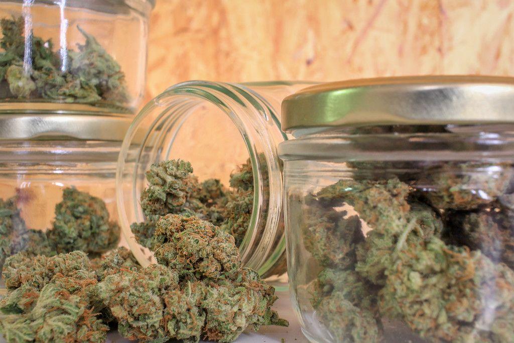 Choose the Right Type of Marijuana