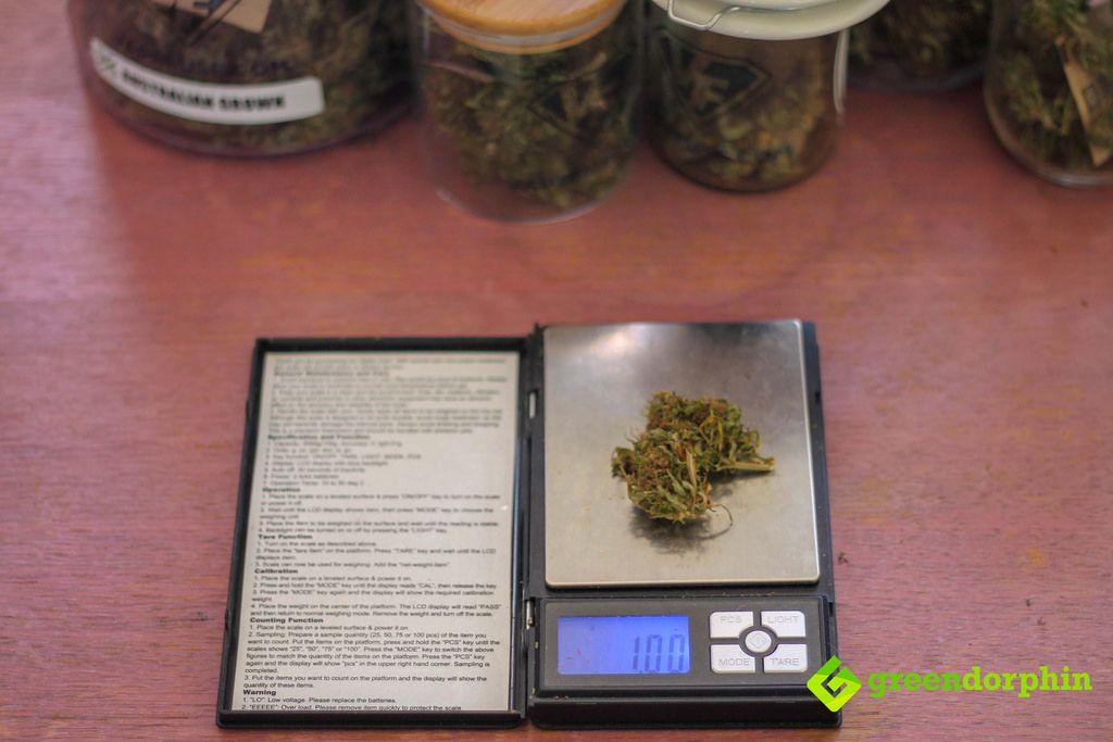 1 gram cannabis buds