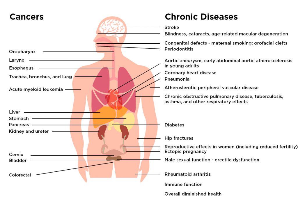 Health Effects of Cigarette Smoking Fact Sheet -vaping cannabis