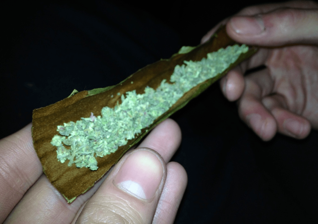 Packwoods Pre-Rolled Blunts: The Pot Party Favorite