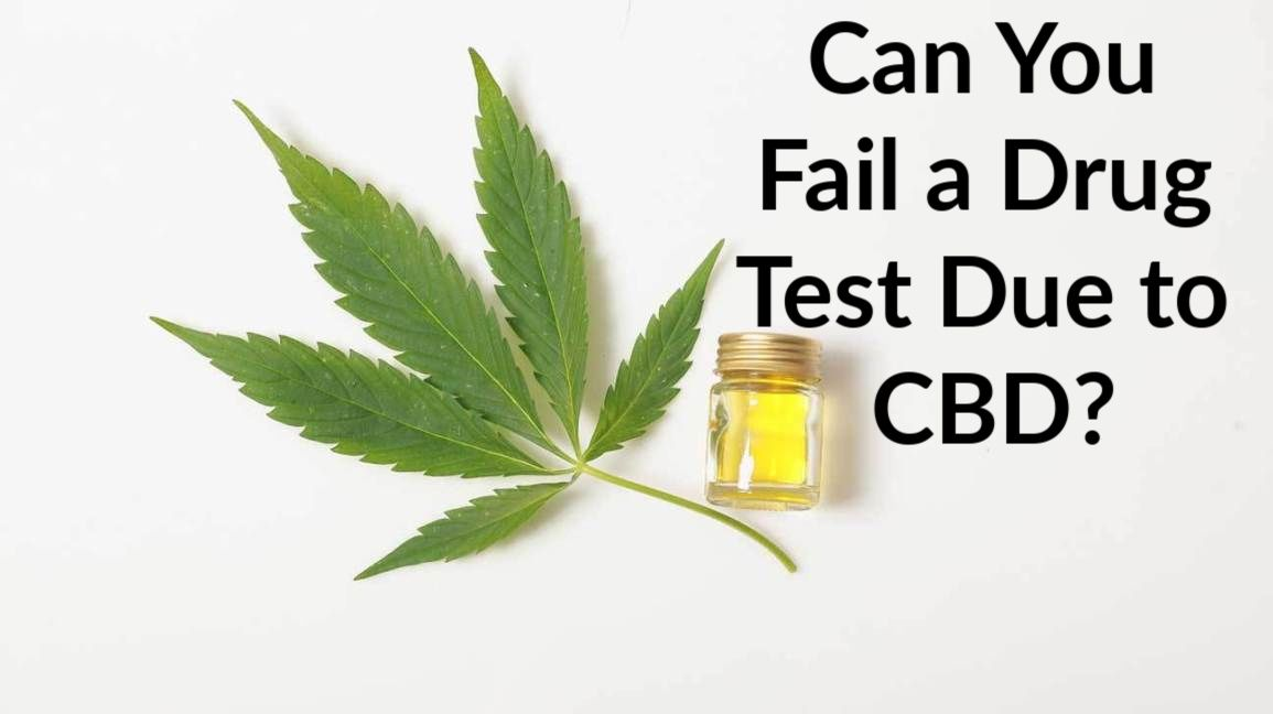 Can You Fail a Drug Test Due to CBD? |Use Test Clear To Pass