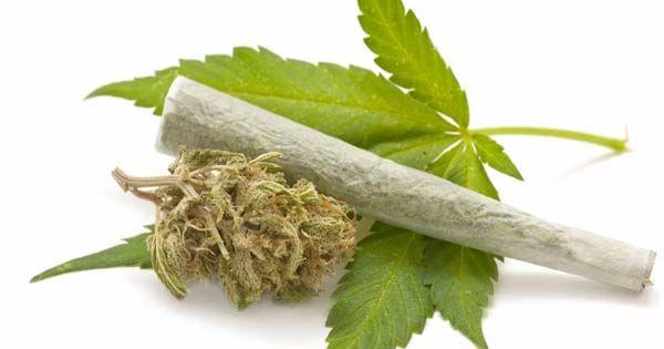cannabis joint