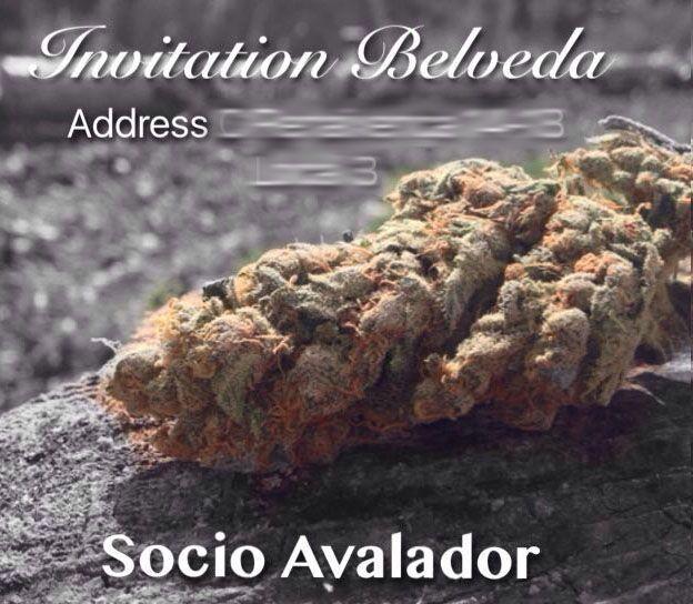 Barcelona Cannabis clubs- nvitation private