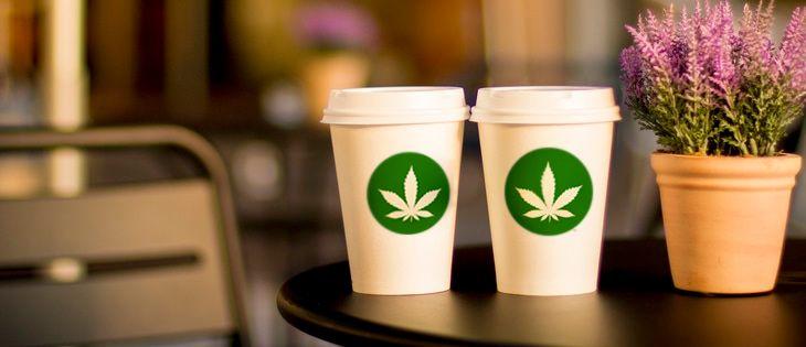 cannabis culture