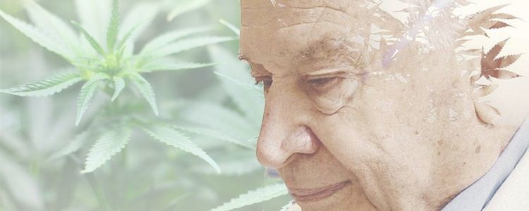 Dr Mechoulam - Entourage Effect of Cannabis