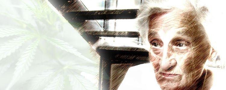 Treatment for Alzheimer's