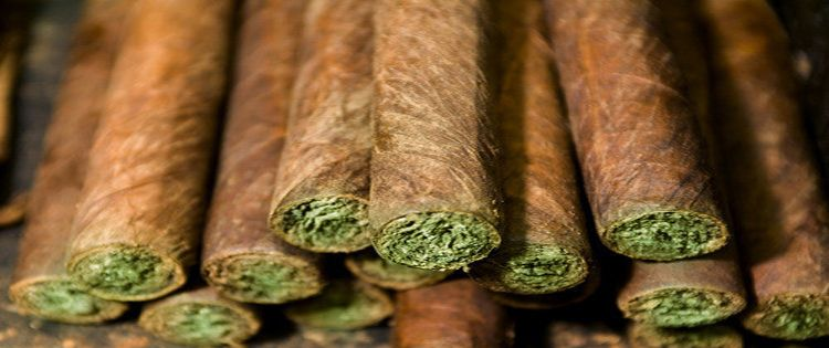 Big Tobacco Company Invests in Cannabis Research