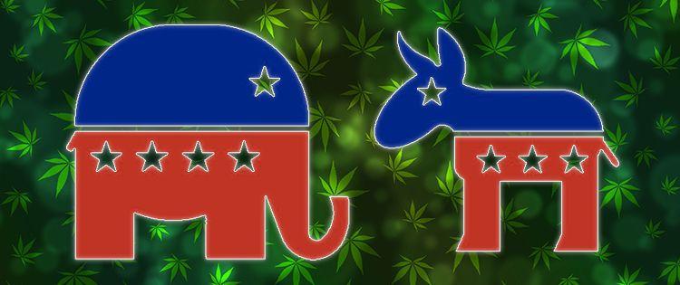 cannabis lobby - California