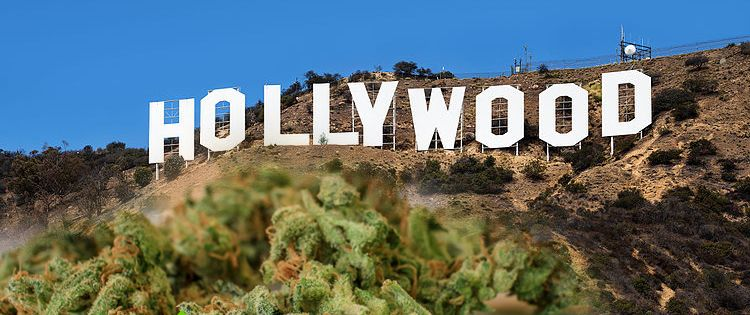 Celebrities are Cashing in on the Cannabis Industry - Hollywood