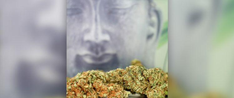 The Art and Science of Ganja Yoga ; Marijuana-infused Massage