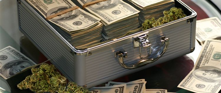 Cannabis and the Banking Sector