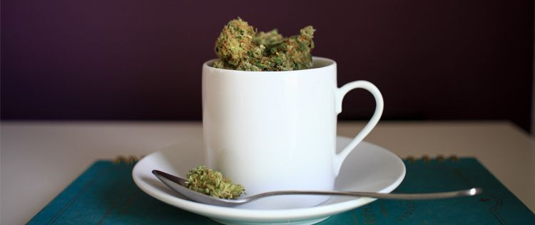 cannabis cafe