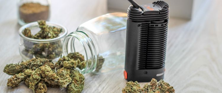 How you can benefit from Vaping Cannabis with Common Herbs