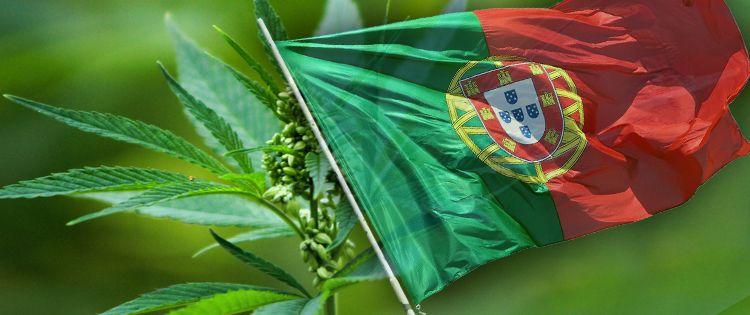 Cannabis Law in Portugal