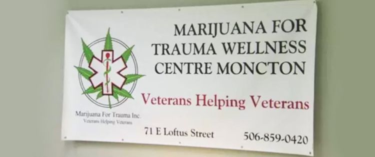 Marijuana for Trauma Signage
