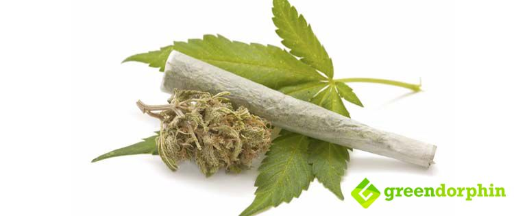 Cannabis smoke doesn't cause cancer, it can be still irritating to the throat and can lead to coughing.