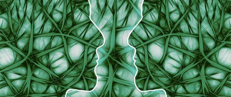 How marijuana reacts in the body