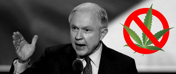 Jeff Sessions on cannabis