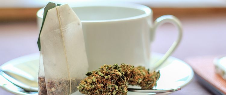 marijuana tea / hemp tea
