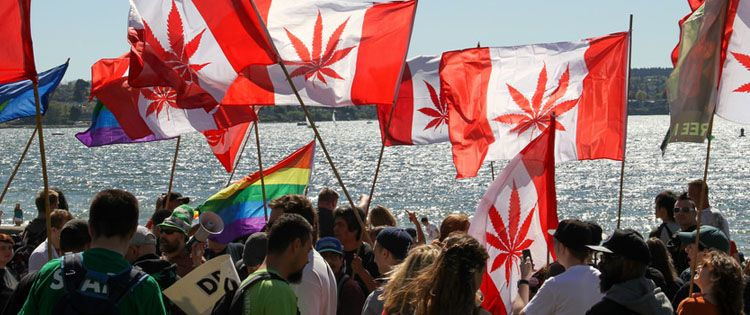 Cannabis Legalization in Canada – Here is What You Need to Know