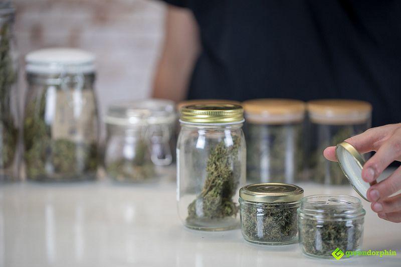 Does Marijuana Expire? - storing cannabis