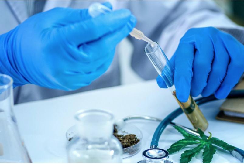 Cannabis Laboratory Testing